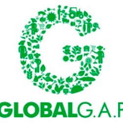Certificación global gap